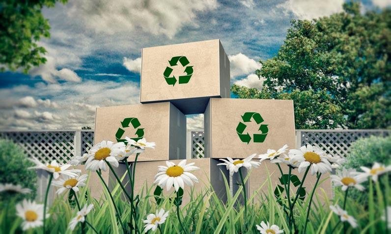 Mudanzas y medio ambiente