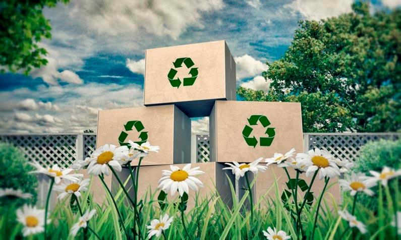cómo hacer una mudanza sostenible